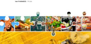 L'empreinte énergétique et carbone de l'alimentation en France – de la production à la consommation