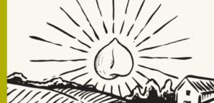 Pulse fiction – Pour une transition agricole et alimentaire durable